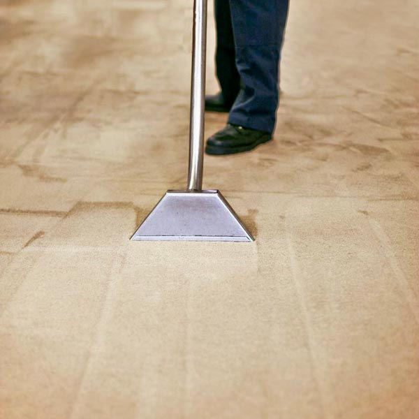 Frieze Carpet Cleaning